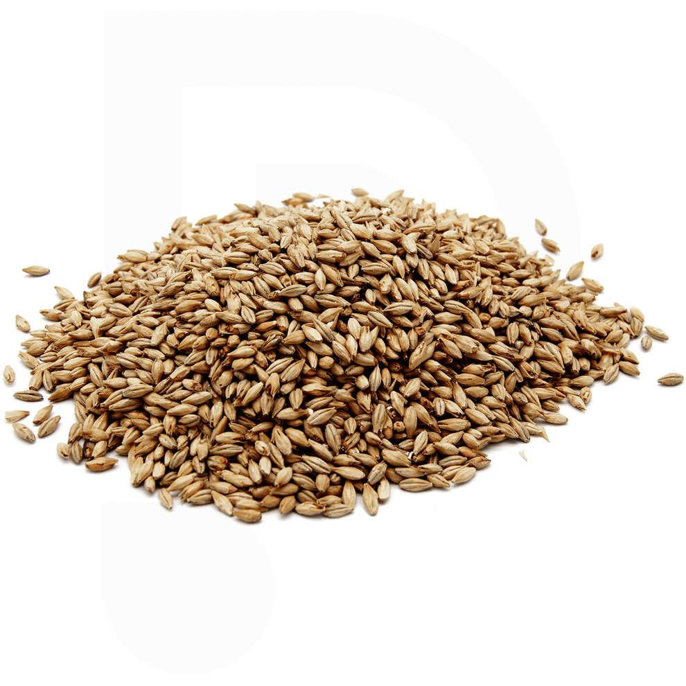 Barley malt Pale Ale (5 kg)