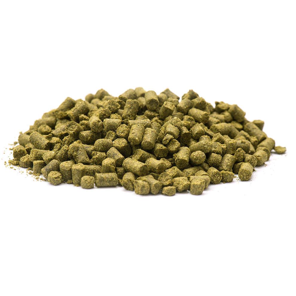 Estiria Golding lúpulo (100 g)