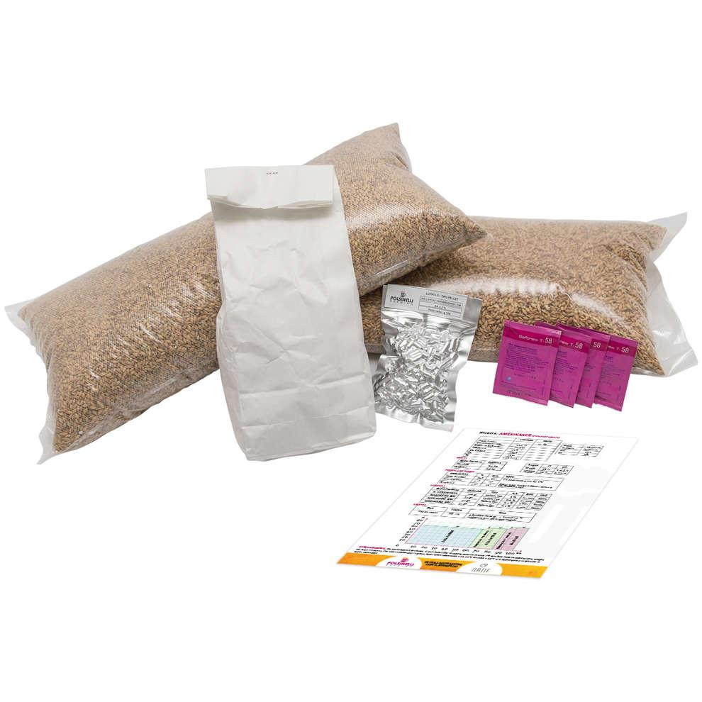 Kit all grain Amnesia per 55 lt - Belgian Tripel