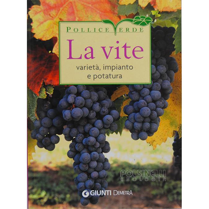 Les variétés de vigne, la plantation et l'élagage