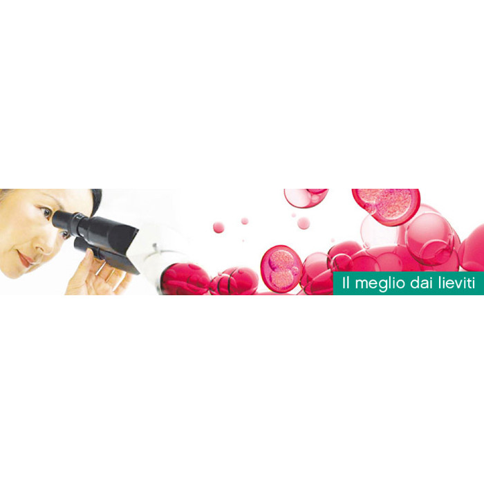 Levadura para vinos tintos ZYMAFLORE F15 (500 g)