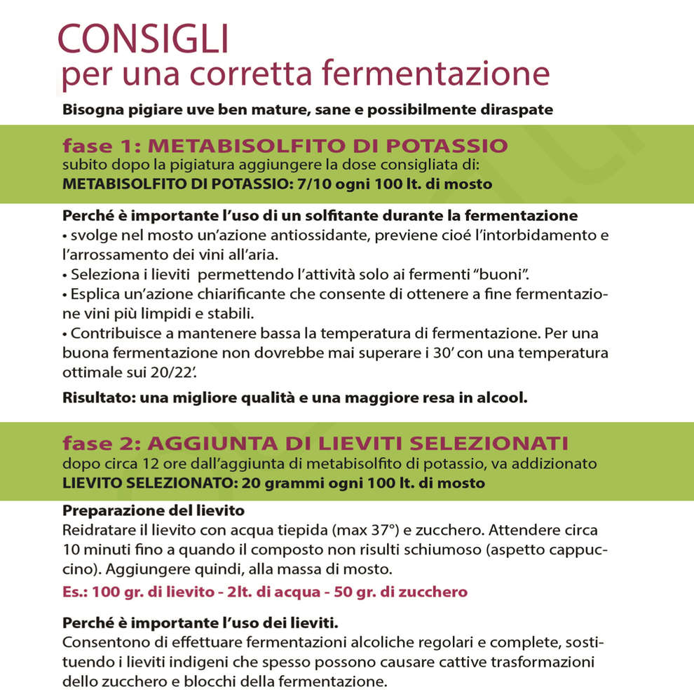 Lievito per vini rossi Zymaflore 011 Bio (500 g)