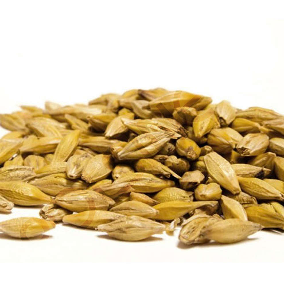 Light wheat malt (5 kg)