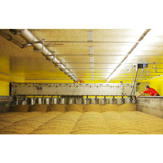 Malt de blé clair 25 kg