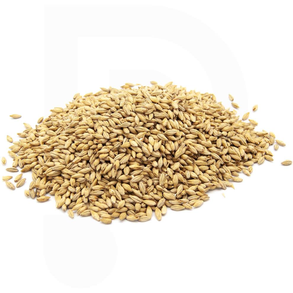 Pilsner malt barley (1 kg)