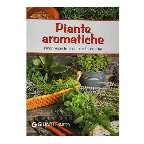 Plantas aromáticas: reconocerlos y utilizarlos en la cocina