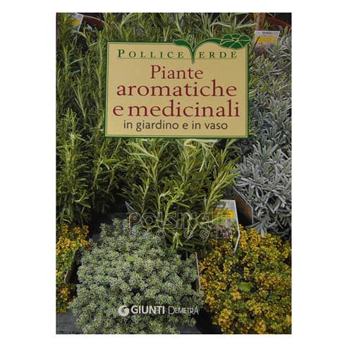 Plantas aromáticas y medicinales en el jardín y en macetas