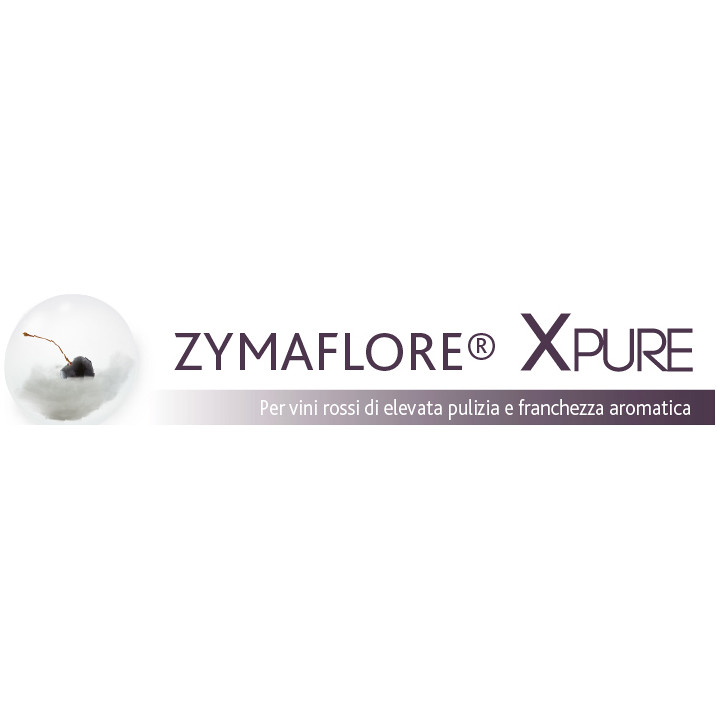 Yeast for red wines zymaflore Xpure (500 g)